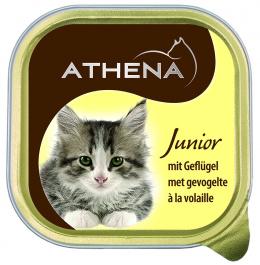 Konservi kaķiem - Athena Junior 100g
