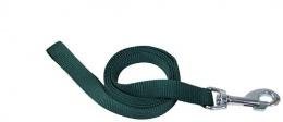 Pavada - DogFantasy neilona, 25 mm, 120 cm, zaļa