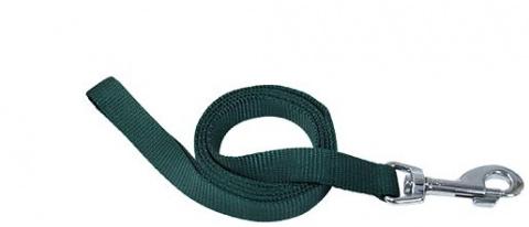 Поводок - DogFantasy нейлон, 25 мм, 120 см, зеленый title=