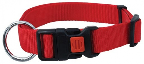 Kakla siksna - DogFantasy neilona, 20mm, 40-55cm, sarkana title=