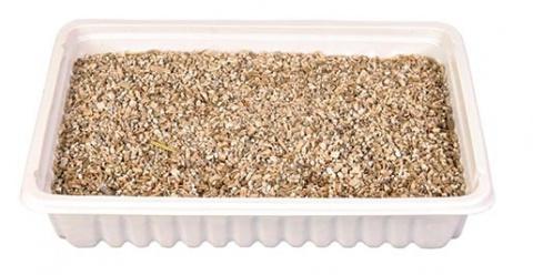 Трава для кошек - Trixie Katzengras (блюдце), 100 г