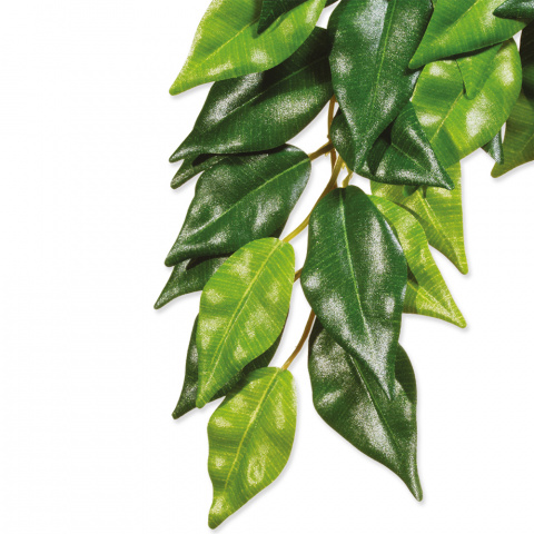 Декор для террариума - ExoTerra Искусственное растение 'Ficus' small title=
