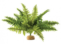 Декор для террариума - EXO TERRA Boston Fern XL