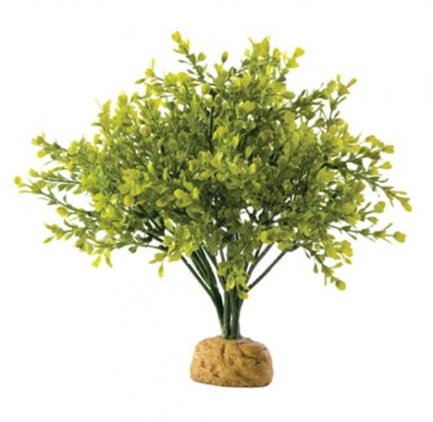 Декор для террариума - ExoTerra 'Boxwood Bush'