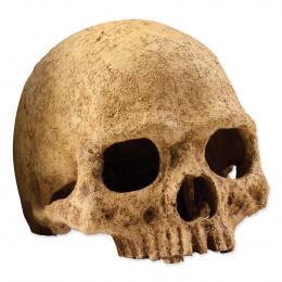 Декор для террариума - EXO TERRA череп
