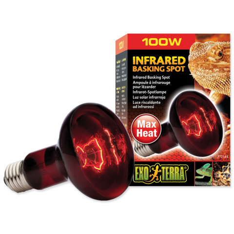 Лампа для террариума - Infrared Heat Glo 100W title=