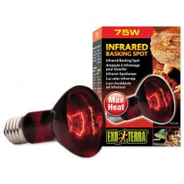 Lampa terārijam - Infrared Heat Glo 75W