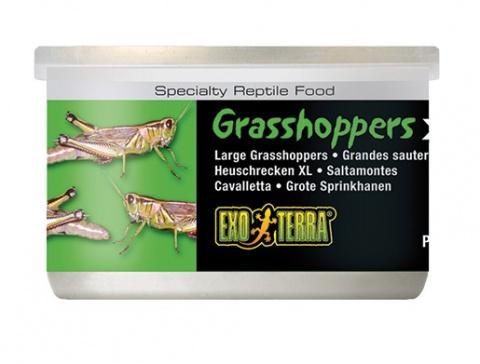 Barība reptiļiem - ExoTerra Grasshoppers XL 34g