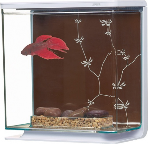 Akvārijs - Marina Betta Kit Contemporary 3L