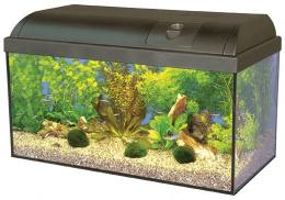 Akvārijs - MARINA Basic, 60x30x30cm (54l)