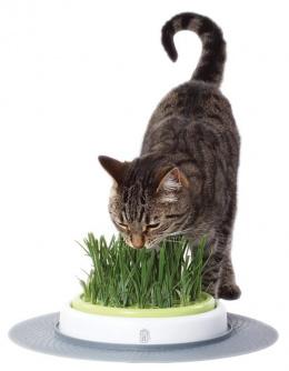 Rotaļlieta kaķiem - CAT IT Design Senses Grass Garden