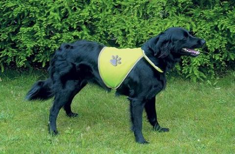 Отражающая жилетка для собак – TRIXIE Safer Life Safety Vest, М title=