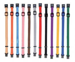 Kakla siksna kucēniem - Set of Puppy Collars, M-L, 22-35cm/10mm, 6gb.