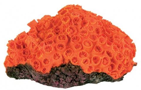 Декор для аквариумов - Коралл, Ассортимент,, 10-13cm