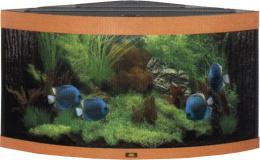 Аквариум - Juwel Trigon 190 (темное дерево)
