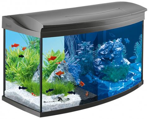 Akvārijs - Tetra AquaArt LED Evolution 100 l title=