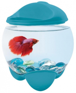 Аквариум - Tetra Betta Bubble, 1.8l, синий