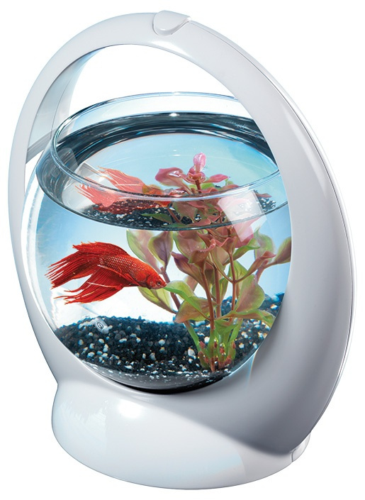 Akvārijs - Tetra Betta Ring, 1.8l, balts