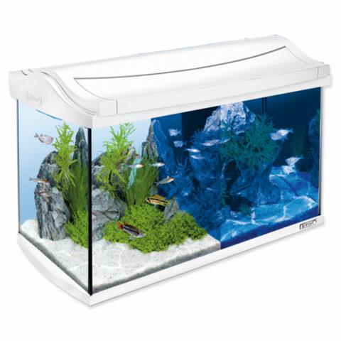 Akvārijs - Tetra AquaArt LED 60l, white title=