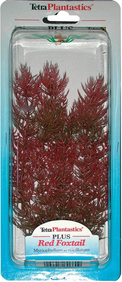 Декоративное растение для аквариума - Перистолистник красный M