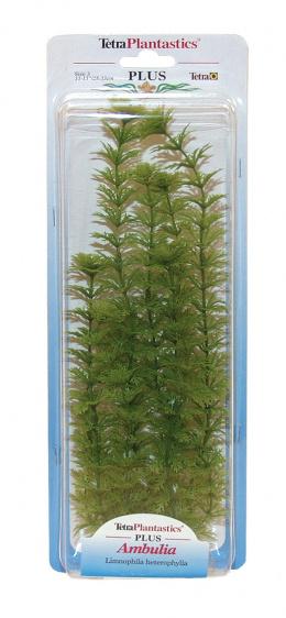 Декоративное растение для аквариума - Амбулия XL
