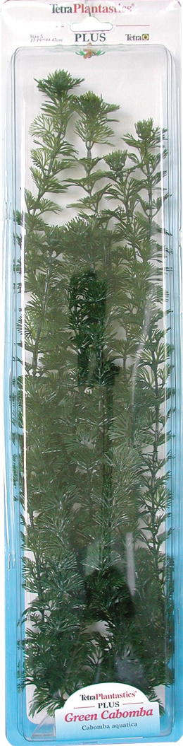 Декоративное растение для аквариума - Зеленая Кабомба XXL
