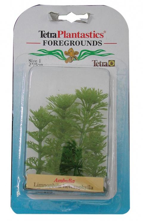 Декоративное растение для аквариума - Амбулия Nr.1