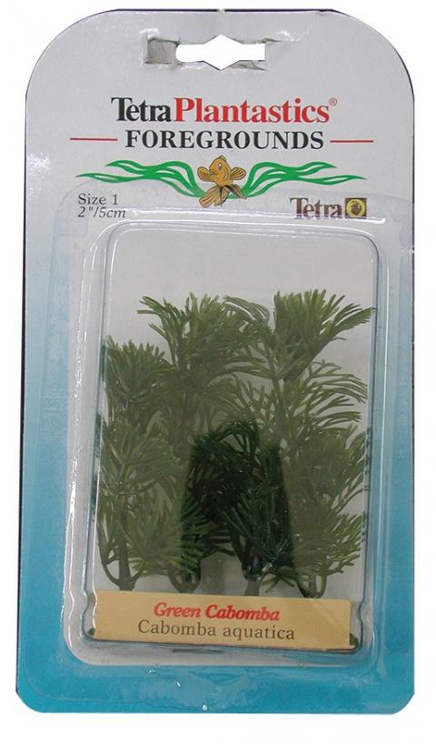Декоративное растение для аквариума - Зеленая Кабомба Nr.1