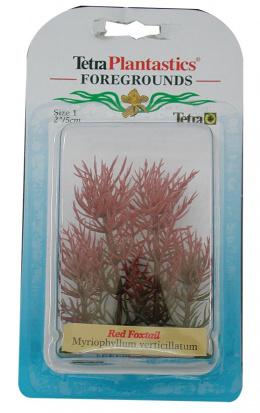 Dekoratīvs augs akvārijam - Red Foxtall XXS