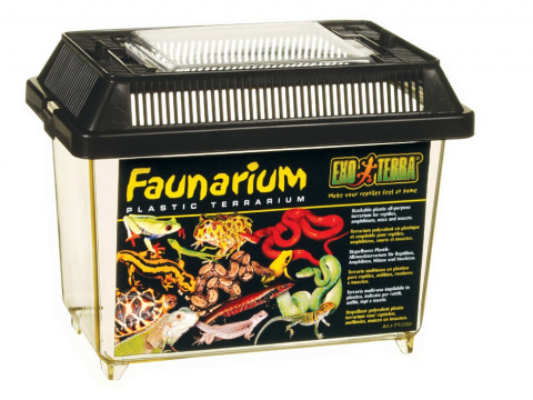 Terārijs - Faunarium 'S' title=