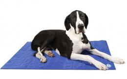 Atvēsinošs paklājiņš suņiem - Scruffs Cool Mat (XL), 120*75 cm