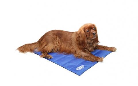 Охлаждающий коврик – Scruffs Cool Mat (M), 77 x 62 cм title=
