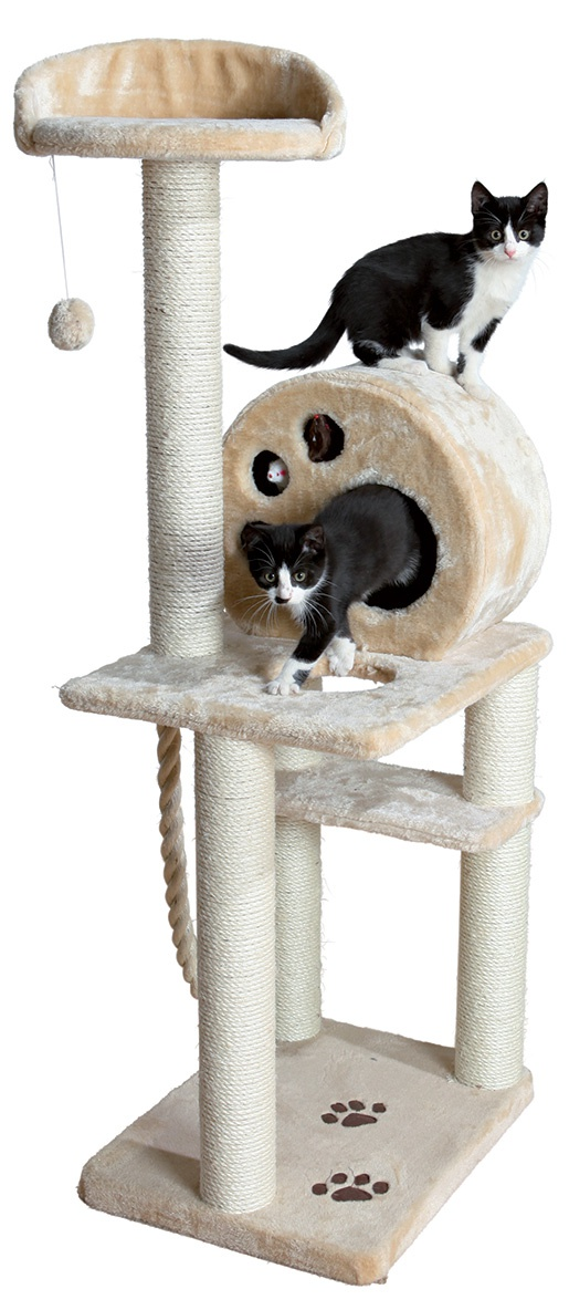Mājiņa kaķiem - Trixie Salamanca, 138 cm, bēša