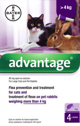 Капли от блох для кошек - Advantage cat 80, 0,8 ml N4, безрецептурный вет. препарат, reģ. NR: VA - 072463/3