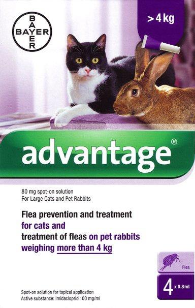 Līdzeklis pret ektoparazītiem kaķiem - Advantage cat 80, 0,8 ml N4, bezrecepšu vet.zāles - bezrecepšu vet.zāles reģ. NR: VA - 072463/3 title=