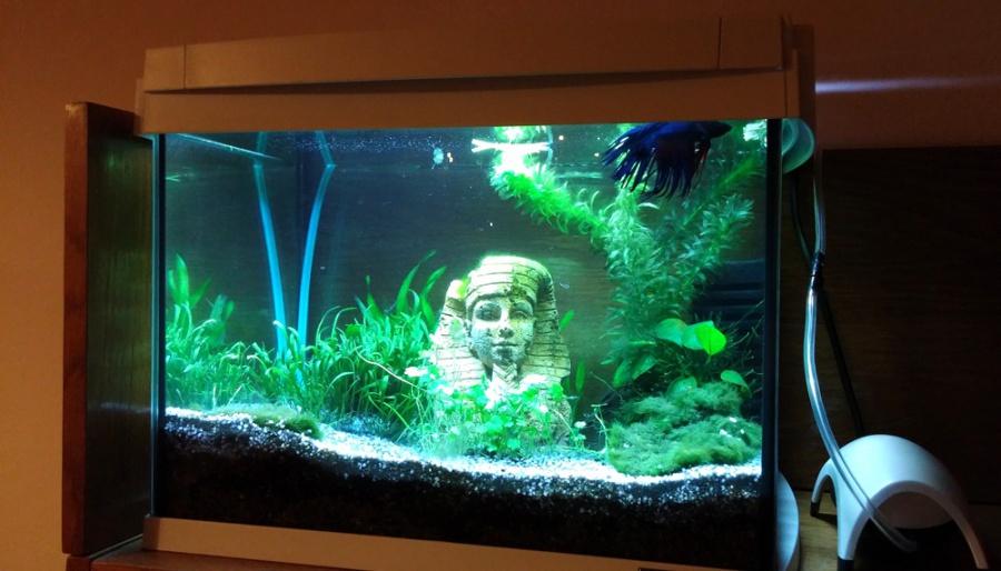 Декор для аквариума - Египетская статуя, 10cm