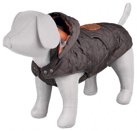 Apģerbs suņiem - Trixie, Cervino coat, S, 40 cm, brūna  title=