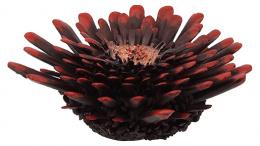Dekors akvārijam - Aqua Excellent Sea Coral, 9.5*9.5*3.4cm, krāsa - sarkana/melna