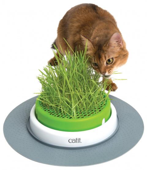 Rotaļlieta kaķiem – CAT IT Design Senses Grass Kit 2.0, Green title=