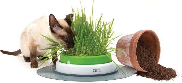 Игрушка для кошек - CAT IT Design Senses Grass Kit 2.0, green