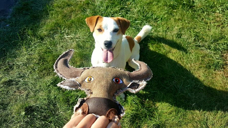 Rotaļlieta suņiem - Dog Fantasy Textile Bull, 28 cm