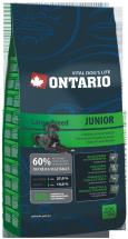 Barība suņiem - Ontario Junior Large Breed 13kg
