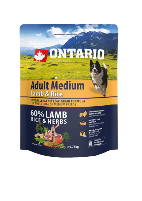 Корм для собак - ONTARIO Adult Medium Lamb & Rice, 0.75 кг