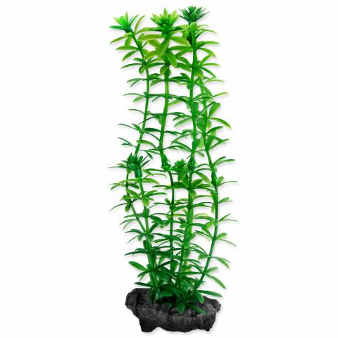 Декоративное растение для аквариума – Anacharis S, 15 cм title=
