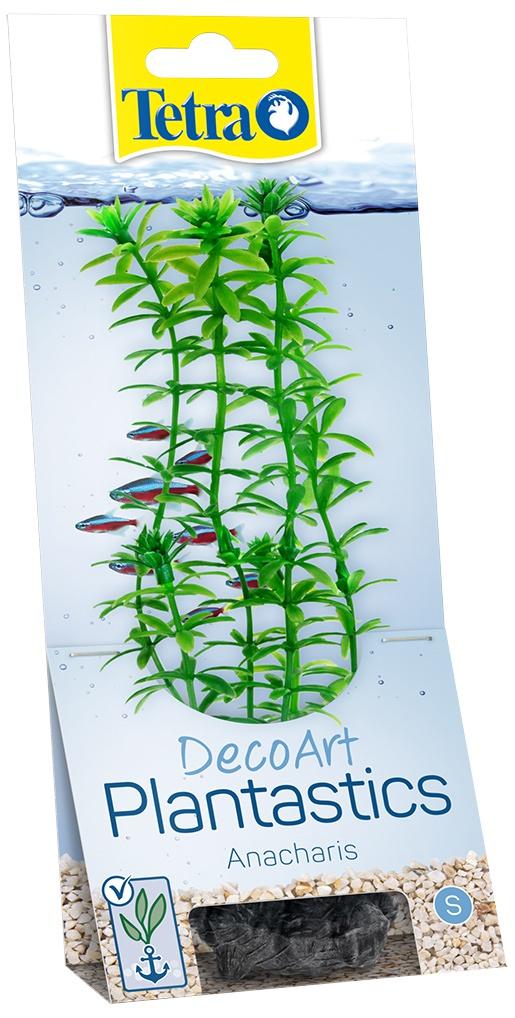 Декоративное растение для аквариума - Anacharis S, 15 cм