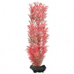 Декоративное растение для аквариума - Tetra Foxtall M, 23cм