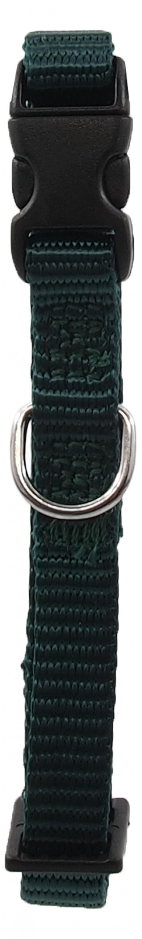 Kakla siksna - Dog Fantasy Classic Neilona XS, 1 cm, 21-30 cm, krāsa – zaļā