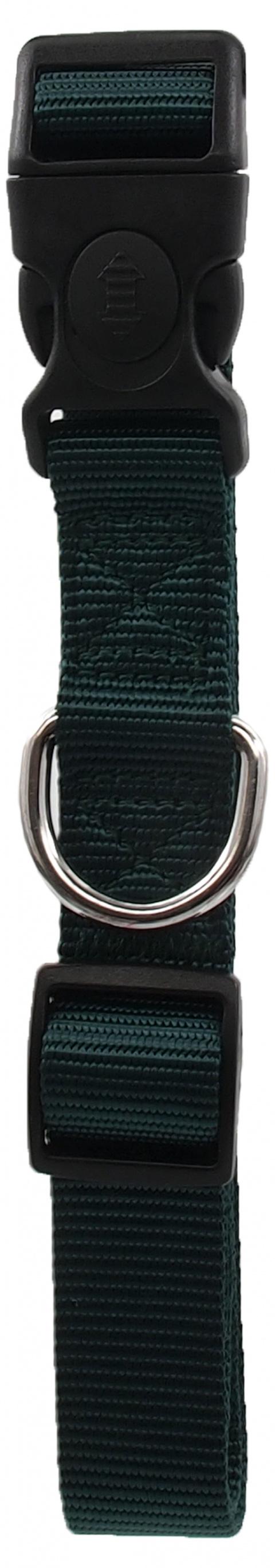 Kakla siksna - Dog Fantasy Classic Neilona L, 2.5cm, 45-68cm, krāsa - zaļā title=