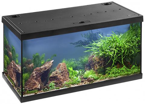 Akvārijs - EHEIM Aquastar LED, melns, 54 L