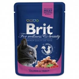 Консервы для кошек -  BRIT Premium, с лососем и форелью, 100 gr